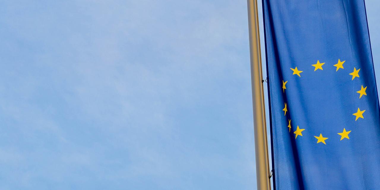 Sommet de Porto -: l'UDES appelle à une Europe plus inclusive