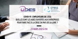 Webinaire UDES / CRESS sur les aides en Pays de la Loire pour faire face à la crise
