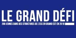 """Logo du """"grand défi"""" en Grand Est"""